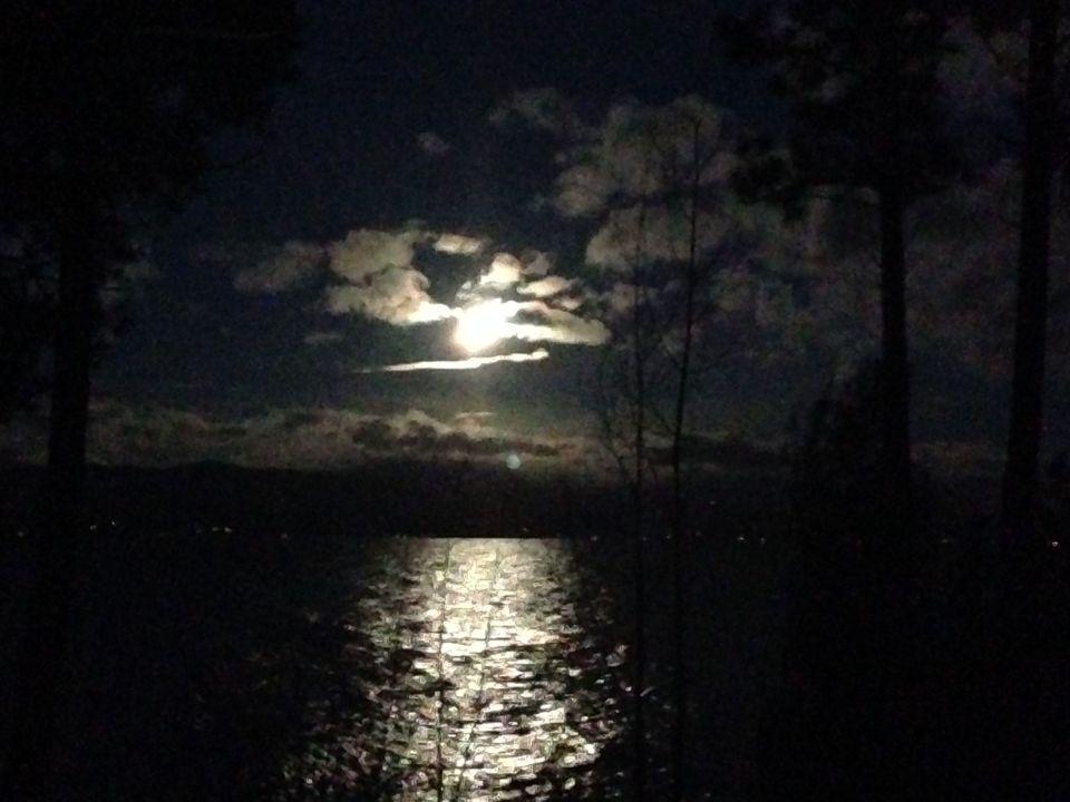 beaver moon3