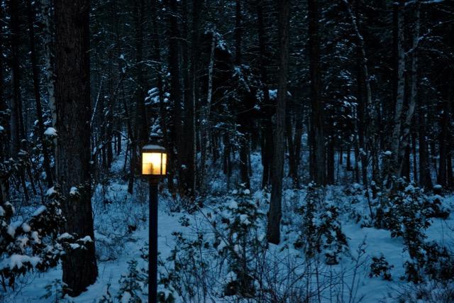winter nights enlarge - 1