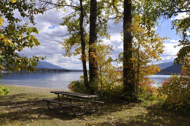 swan-lake-1