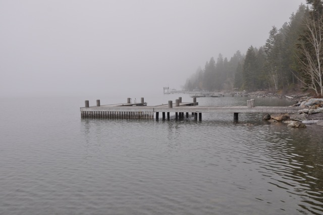 the-fog-1
