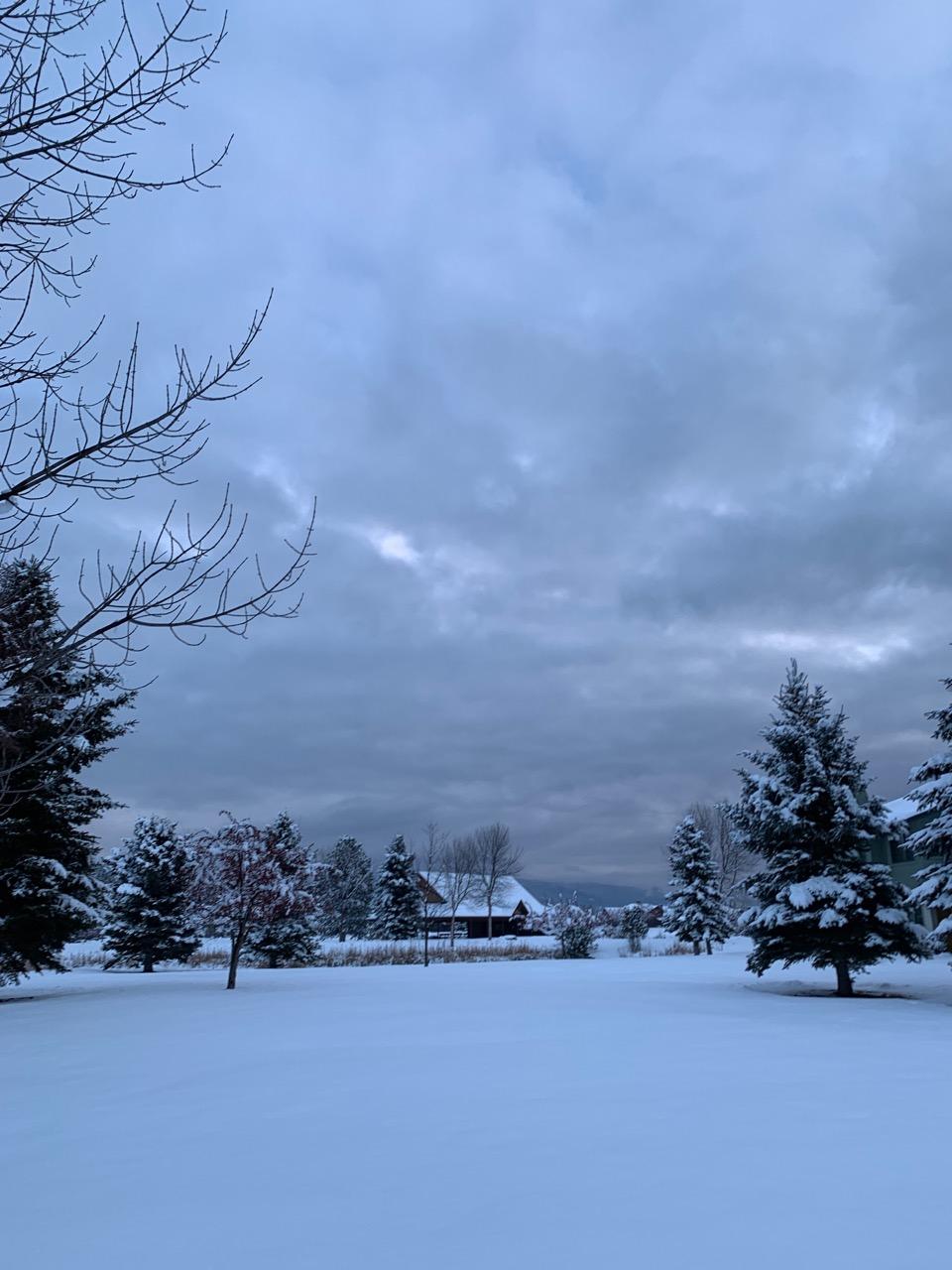 snow - 1 (1)