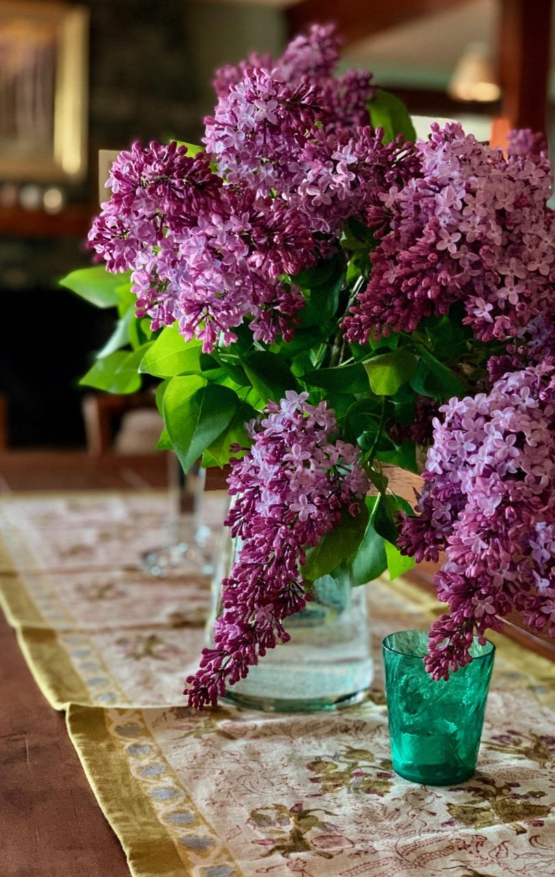 lilac days - 1.jpg